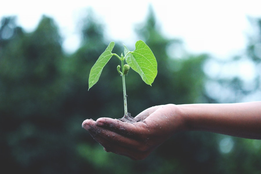 lead nurturing - best practice